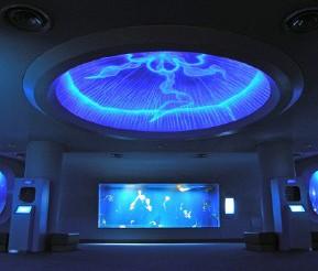 江ノ島 藤沢市のおすすめ観光名所 新江ノ島水族館